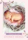 Baby Birdy Pink