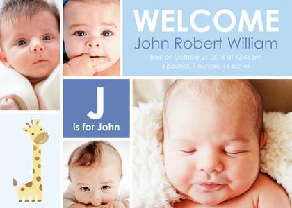 Adorable Birth Announcement  (Copy)